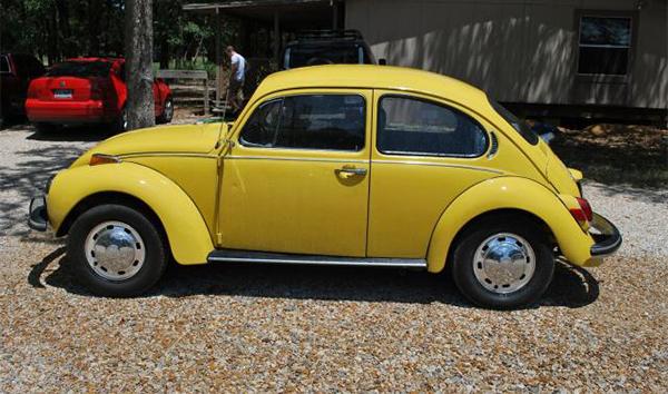 bug 600