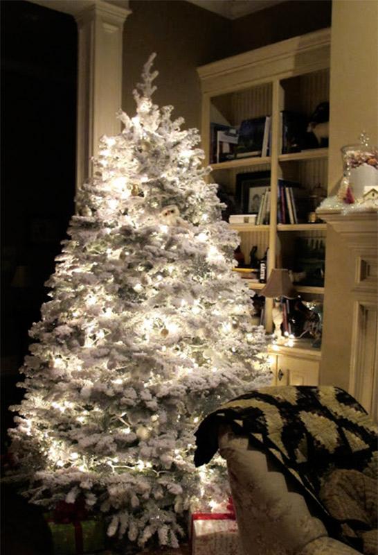 Laura's-tree